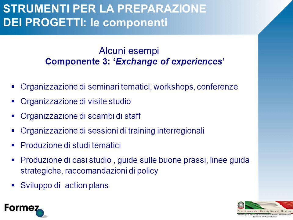 STRUMENTI PER LA PREPARAZIONE DEI PROGETTI: le componenti Alcuni esempi Componente 3: 'Exchange of experiences'  Organizzazione di seminari tematici,