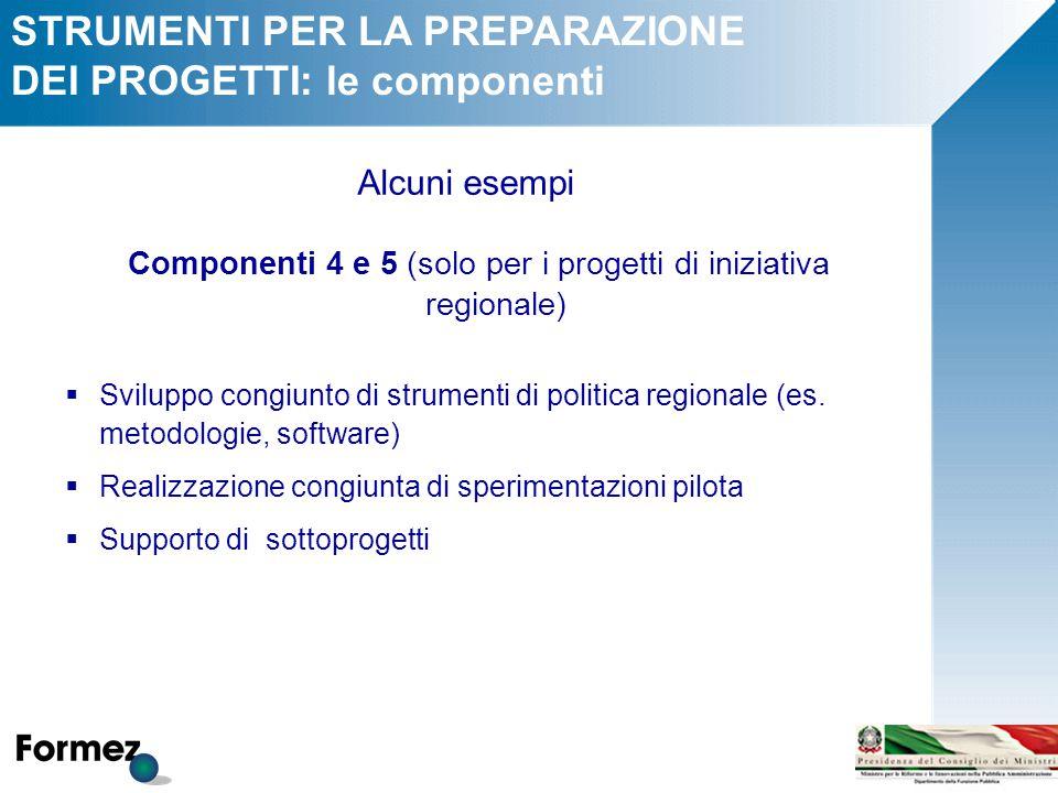 STRUMENTI PER LA PREPARAZIONE DEI PROGETTI: le componenti Alcuni esempi Componenti 4 e 5 (solo per i progetti di iniziativa regionale)  Sviluppo congiunto di strumenti di politica regionale (es.