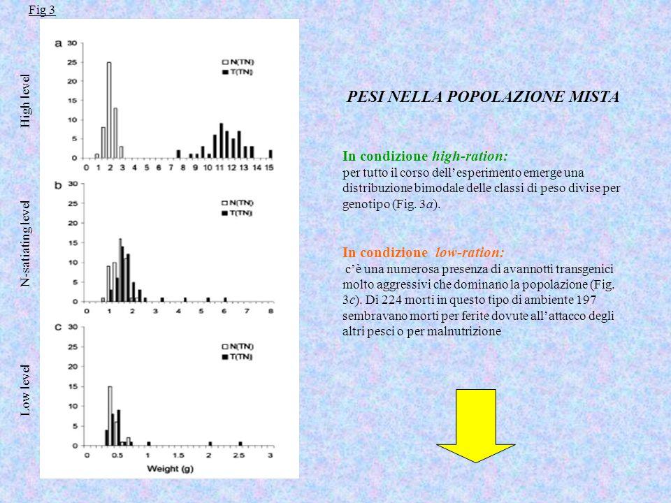 PESI NELLA POPOLAZIONE MISTA In condizione high-ration: per tutto il corso dell'esperimento emerge una distribuzione bimodale delle classi di peso divise per genotipo (Fig.