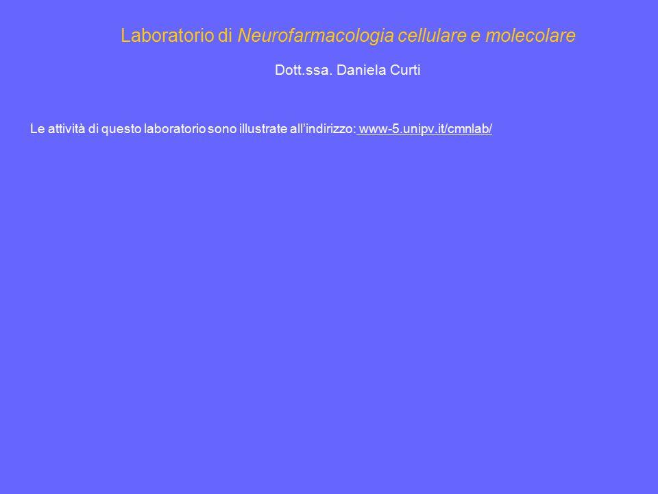 Laboratorio di Neurofarmacologia cellulare e molecolare Dott.ssa. Daniela Curti Le attività di questo laboratorio sono illustrate all'indirizzo: www-5