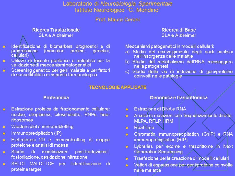 """Laboratorio di Neurobiologia Sperimentale Istituto Neurologico """"C. Mondino"""" Prof. Mauro Ceroni Ricerca Traslazionale SLA e Alzheimer  Identificazione"""