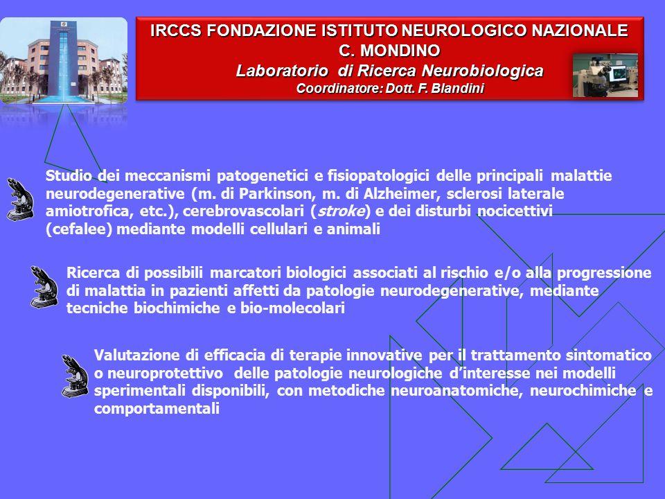 IRCCS FONDAZIONE ISTITUTO NEUROLOGICO NAZIONALE C. MONDINO Laboratorio di Ricerca Neurobiologica Coordinatore: Dott. F. Blandini IRCCS FONDAZIONE ISTI