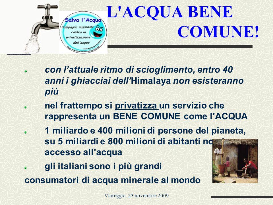 Viareggio, 25 novembre 2009 L ACQUA BENE COMUNE.