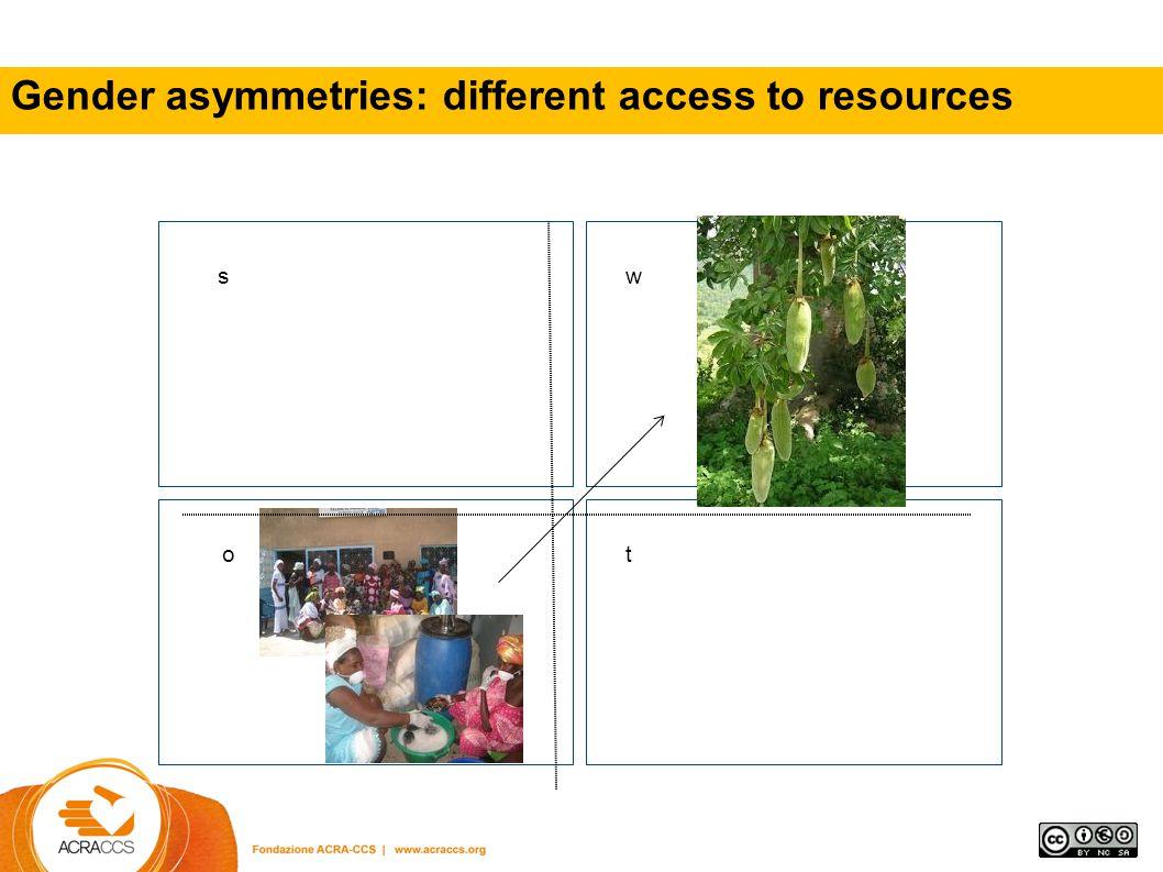 Gender asymmetris (use of time – control of income) MAE (Italian Ministry of Foreign Affairs) Programma triennale di sviluppo comunitario nelle isole Bijagos (Guinea Bissau) .