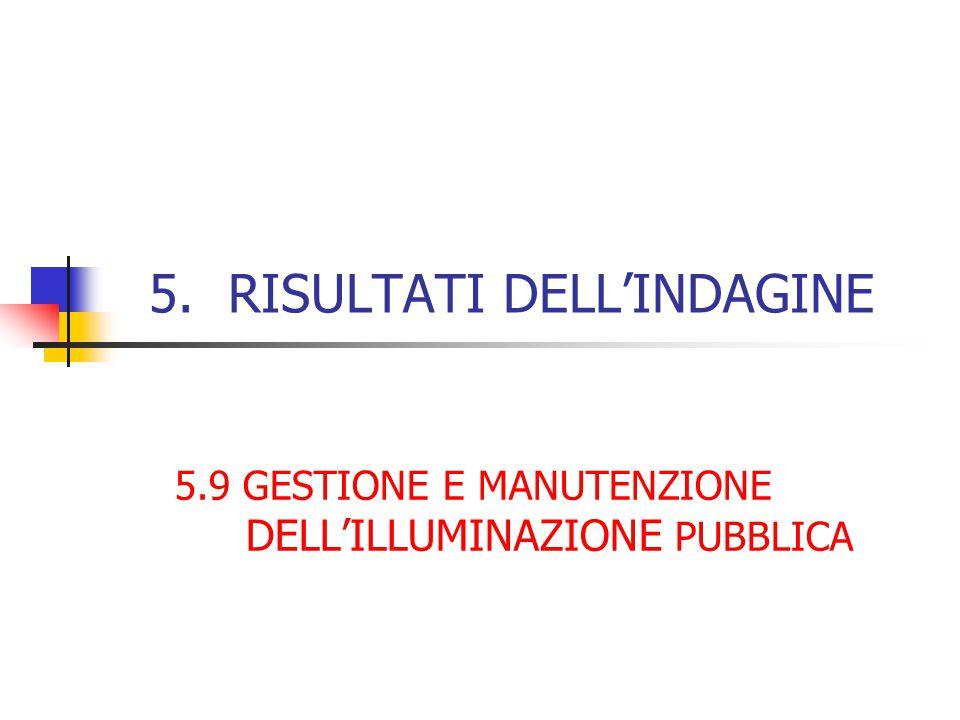 5. RISULTATI DELL'INDAGINE 5.9 GESTIONE E MANUTENZIONE DELL'ILLUMINAZIONE PUBBLICA
