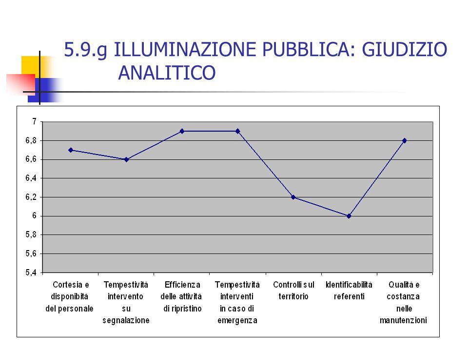 5.9.g ILLUMINAZIONE PUBBLICA: GIUDIZIO ANALITICO