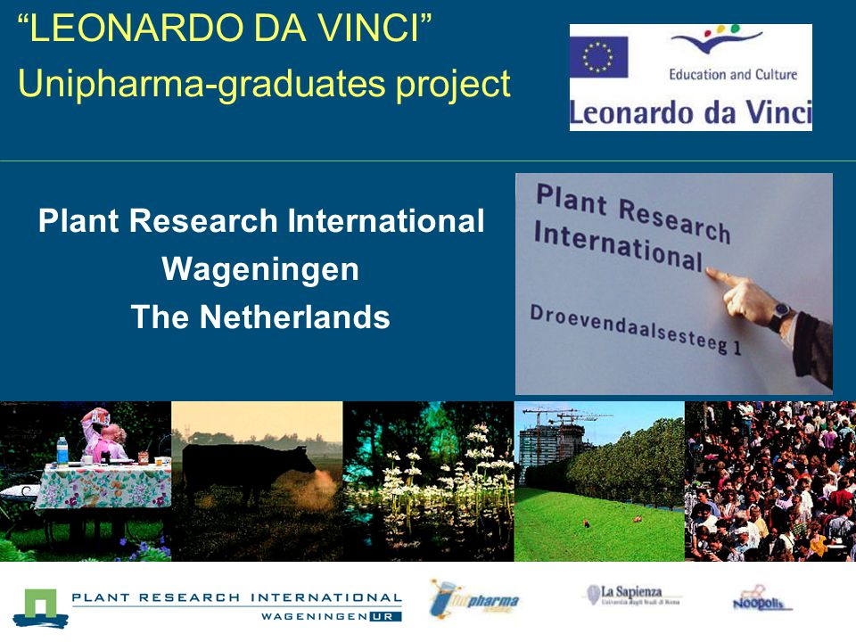 LEONARDO DA VINCI Unipharma-graduates project Plant Research International Wageningen The Netherlands