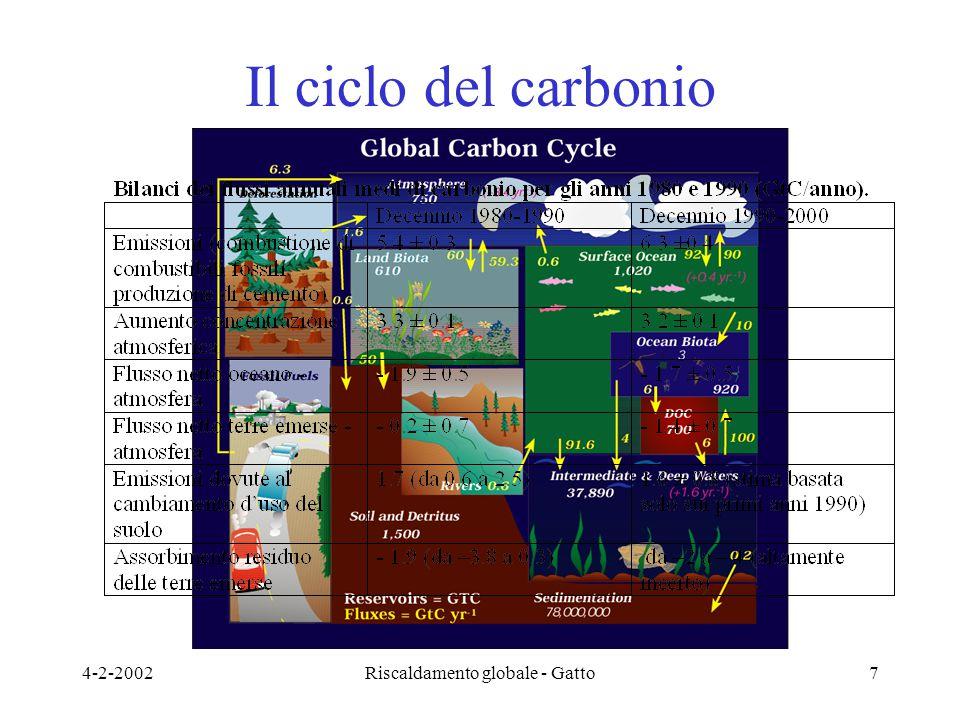 4-2-2002Riscaldamento globale - Gatto7 Il ciclo del carbonio