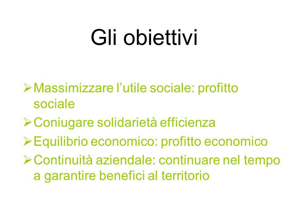 Gli obiettivi  Massimizzare l'utile sociale: profitto sociale  Coniugare solidarietà efficienza  Equilibrio economico: profitto economico  Continuità aziendale: continuare nel tempo a garantire benefici al territorio
