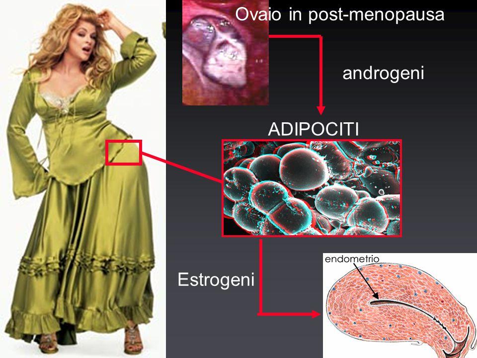 Ca endometrio: sintomi MetrorragiaMetrorragia La comparsa di metrorragia avviene quando il tumore è ancora nelle fasi inizialiLa comparsa di metrorragia avviene quando il tumore è ancora nelle fasi iniziali Nelle fasi avanzate sintomi da interessamento degli organi contiguiNelle fasi avanzate sintomi da interessamento degli organi contigui MetrorragiaMetrorragia La comparsa di metrorragia avviene quando il tumore è ancora nelle fasi inizialiLa comparsa di metrorragia avviene quando il tumore è ancora nelle fasi iniziali Nelle fasi avanzate sintomi da interessamento degli organi contiguiNelle fasi avanzate sintomi da interessamento degli organi contigui