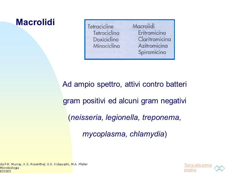 Torna alla prima pagina Macrolidi Ad ampio spettro, attivi contro batteri gram positivi ed alcuni gram negativi (neisseria, legionella, treponema, mycoplasma, chlamydia)