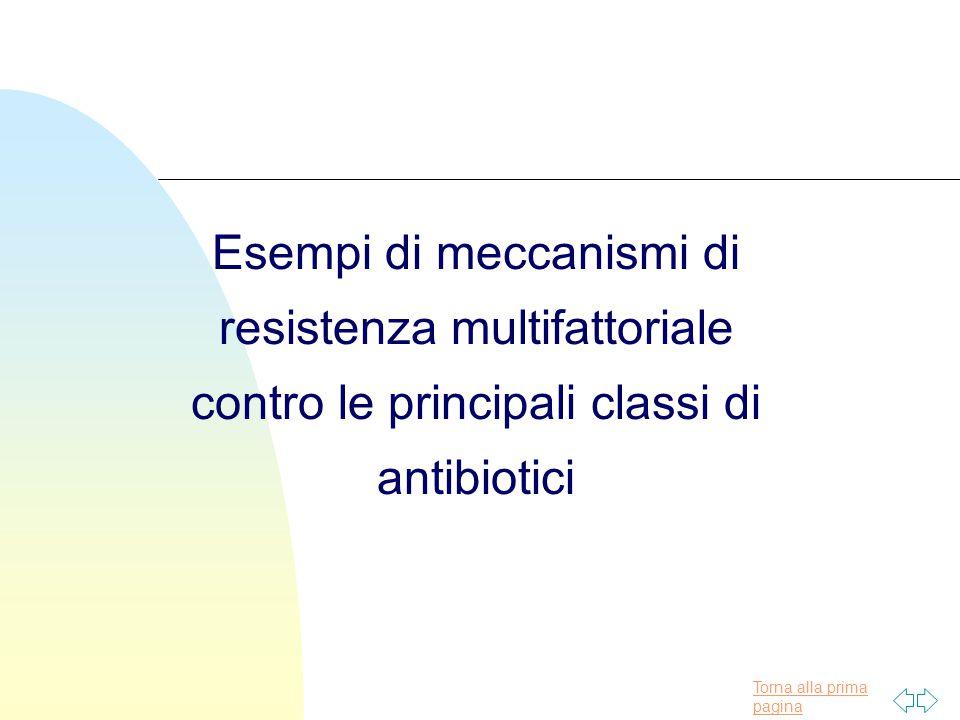 Torna alla prima pagina Esempi di meccanismi di resistenza multifattoriale contro le principali classi di antibiotici