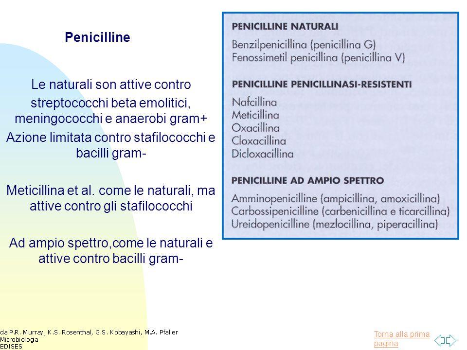 Torna alla prima pagina Esempi di cefalosporine e di cefamicine Prima e seconda generazione attiva contro gram+ ed alcuni gram- Terza generazione attiva contro gram+ e maggiore attivita' contro gram -