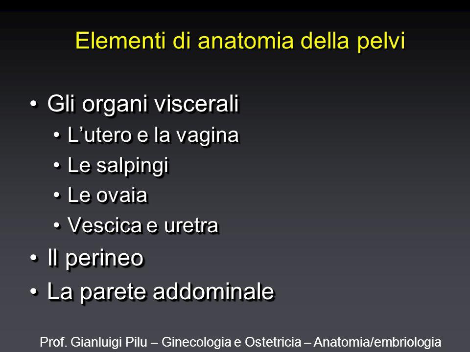 Prof. Gianluigi Pilu – Ginecologia e Ostetricia – Anatomia/embriologia Elementi di anatomia della pelvi Gli organi visceraliGli organi viscerali L'ute