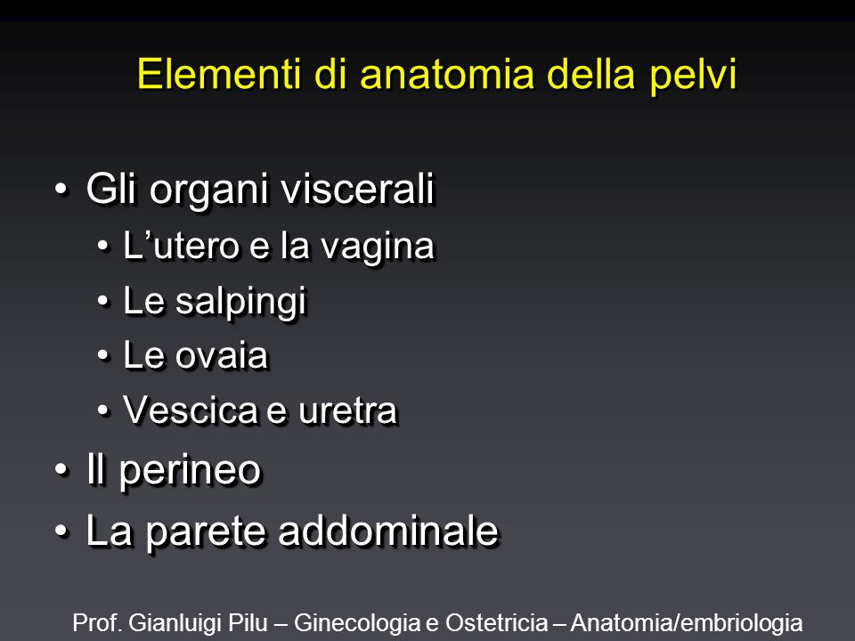 Prof. Gianluigi Pilu – Ginecologia e Ostetricia – Anatomia/embriologia Perineo in sezione frontale
