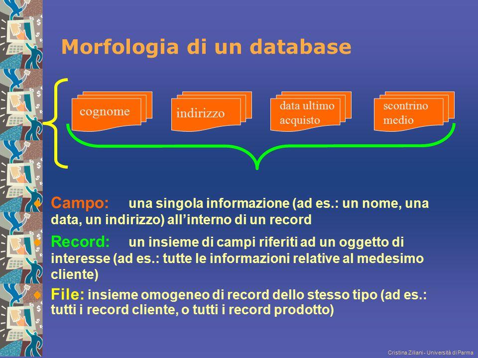 Cristina Ziliani - Università di Parma Morfologia di un database Campo: una singola informazione (ad es.: un nome, una data, un indirizzo) all'interno
