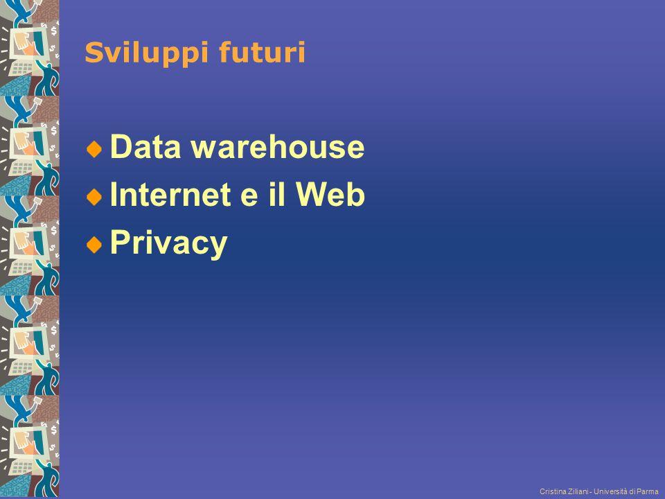 Cristina Ziliani - Università di Parma Sviluppi futuri Data warehouse Internet e il Web Privacy