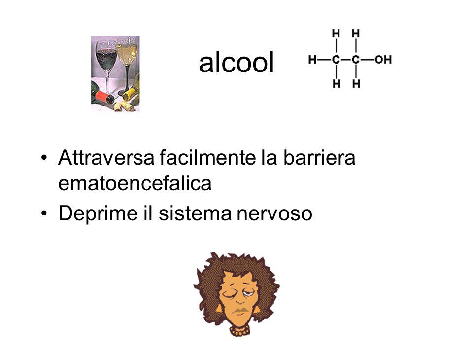 alcool Attraversa facilmente la barriera ematoencefalica Deprime il sistema nervoso