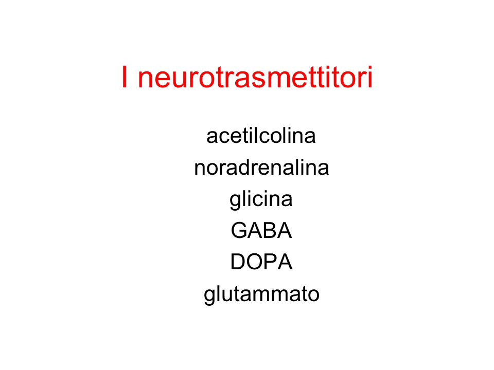I neurotrasmettitori Piccole molecole: acetilcolina, dopammina, noradrenalina, serotonina istammina Amminoacidi: GABA, glicina, glutammato, aspartato Peptidi neuroattivi: encefalina, somatostasina, ormone della crescita Gas solubili: ossido nitrico, monosido di carbonio