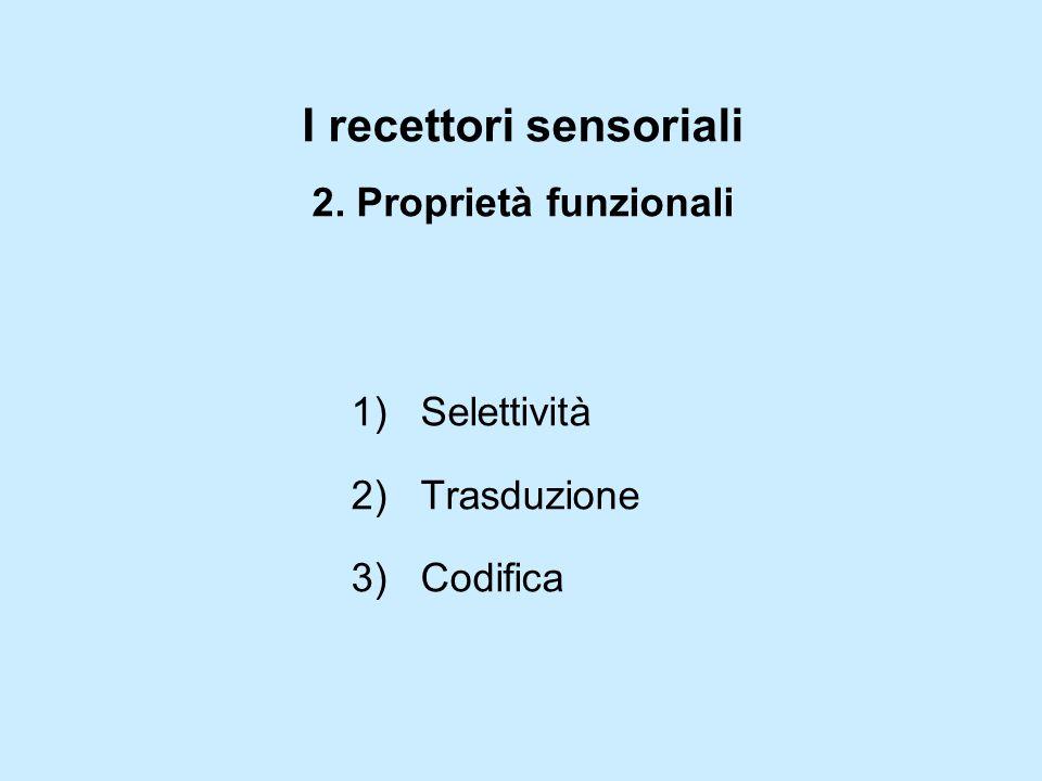 I recettori sensoriali 2. Proprietà funzionali 1)Selettività 2)Trasduzione 3)Codifica