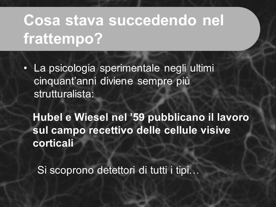 Cosa stava succedendo nel frattempo? La psicologia sperimentale negli ultimi cinquant'anni diviene sempre più strutturalista: Hubel e Wiesel nel '59 p