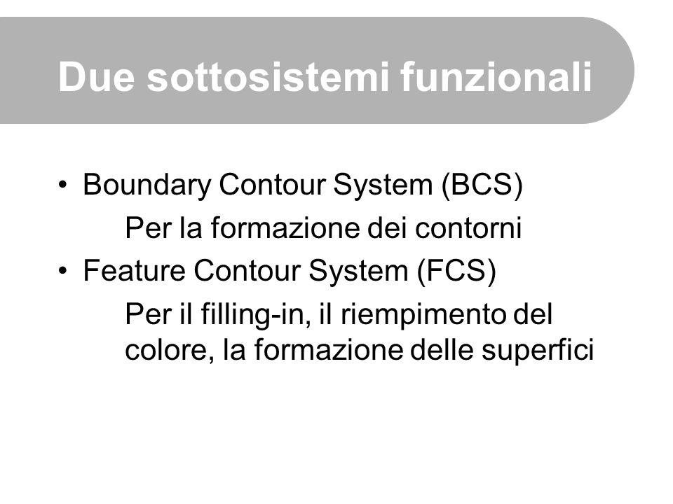 Due sottosistemi funzionali Boundary Contour System (BCS) Per la formazione dei contorni Feature Contour System (FCS) Per il filling-in, il riempiment