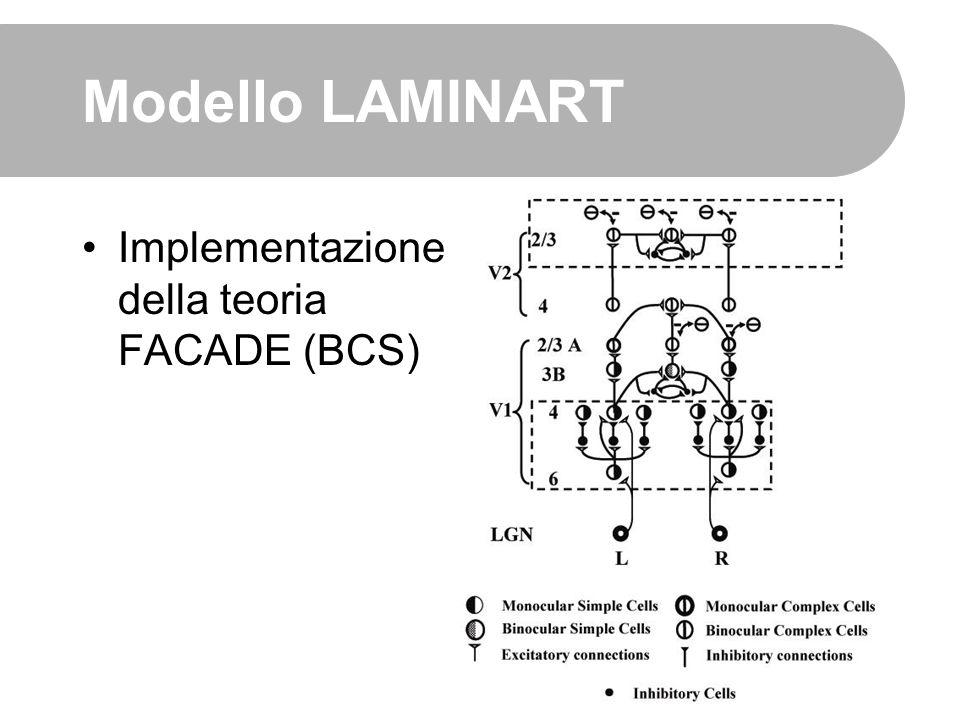 Modello LAMINART Implementazione della teoria FACADE (BCS)