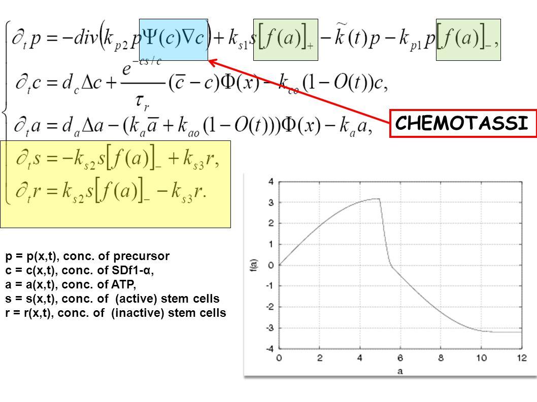 p = p(x,t), conc.of precursor c = c(x,t), conc. of SDf1-α, a = a(x,t), conc.