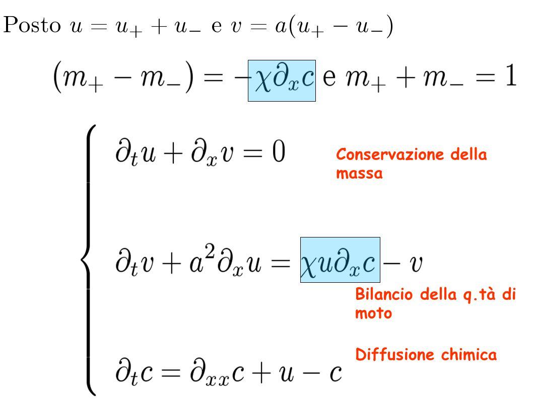 Conservazione della massa Diffusione chimica Bilancio della q.tà di moto