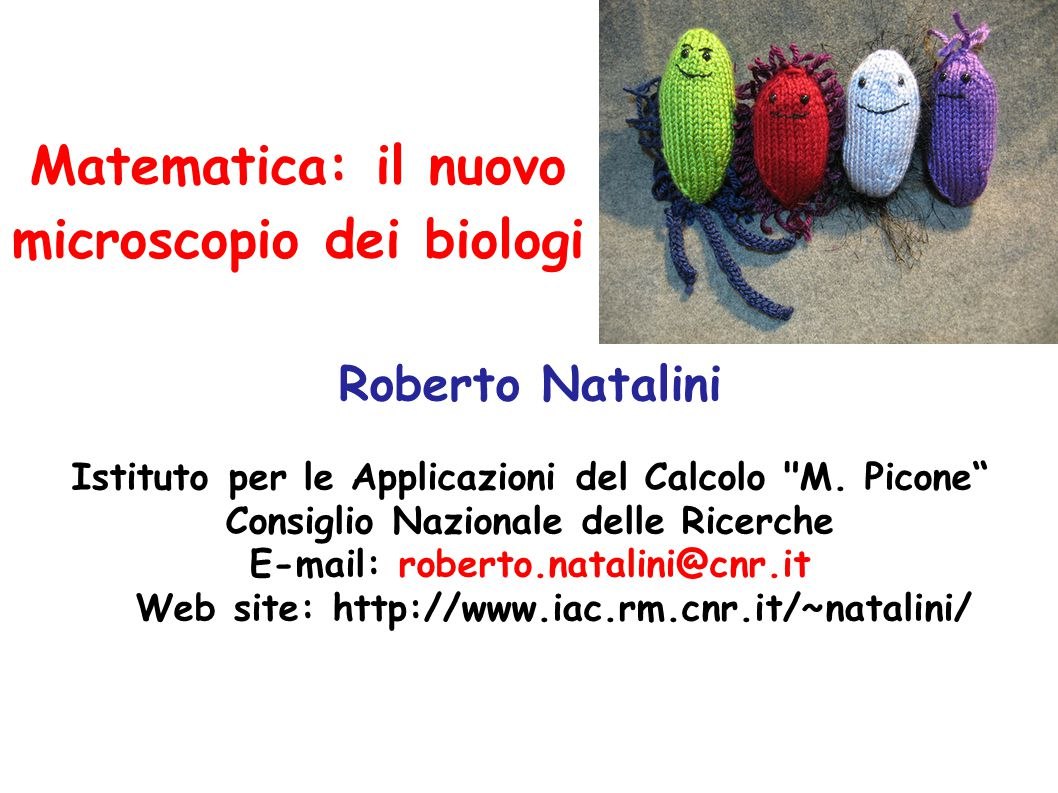 Matematica: il nuovo microscopio dei biologi Roberto Natalini Istituto per le Applicazioni del Calcolo M.