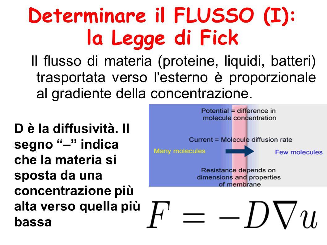 Determinare il FLUSSO (I): la Legge di Fick Il flusso di materia (proteine, liquidi, batteri) trasportata verso l esterno è proporzionale al gradiente della concentrazione.