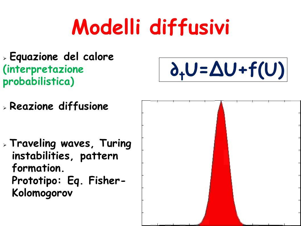 Modelli diffusivi  Equazione del calore (interpretazione probabilistica)  Reazione diffusione  Traveling waves, Turing instabilities, pattern formation.