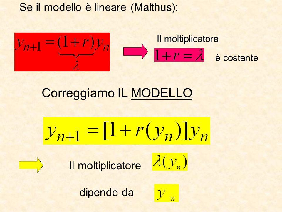 Se il modello è lineare (Malthus): Il moltiplicatore è costante Correggiamo IL MODELLO Il moltiplicatore dipende da