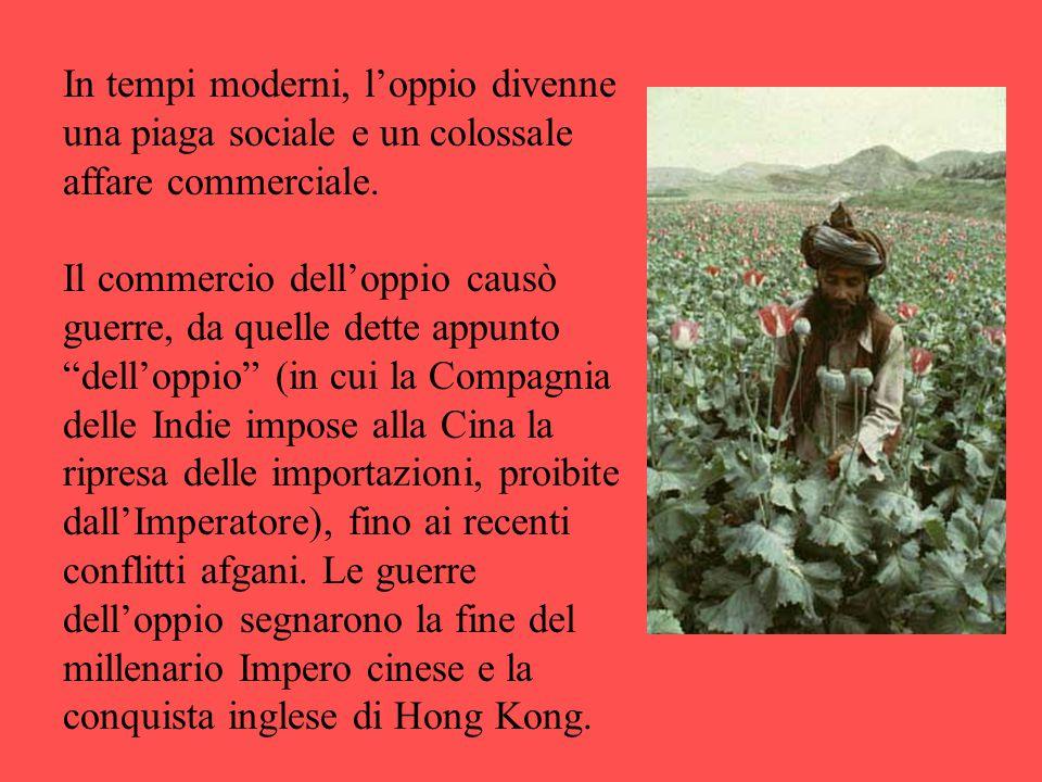 """In tempi moderni, l'oppio divenne una piaga sociale e un colossale affare commerciale. Il commercio dell'oppio causò guerre, da quelle dette appunto """""""