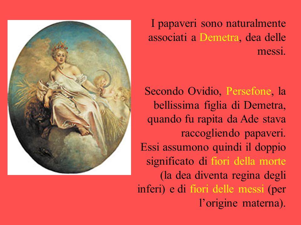 Secondo Ovidio, Persefone, la bellissima figlia di Demetra, quando fu rapita da Ade stava raccogliendo papaveri. Essi assumono quindi il doppio signif