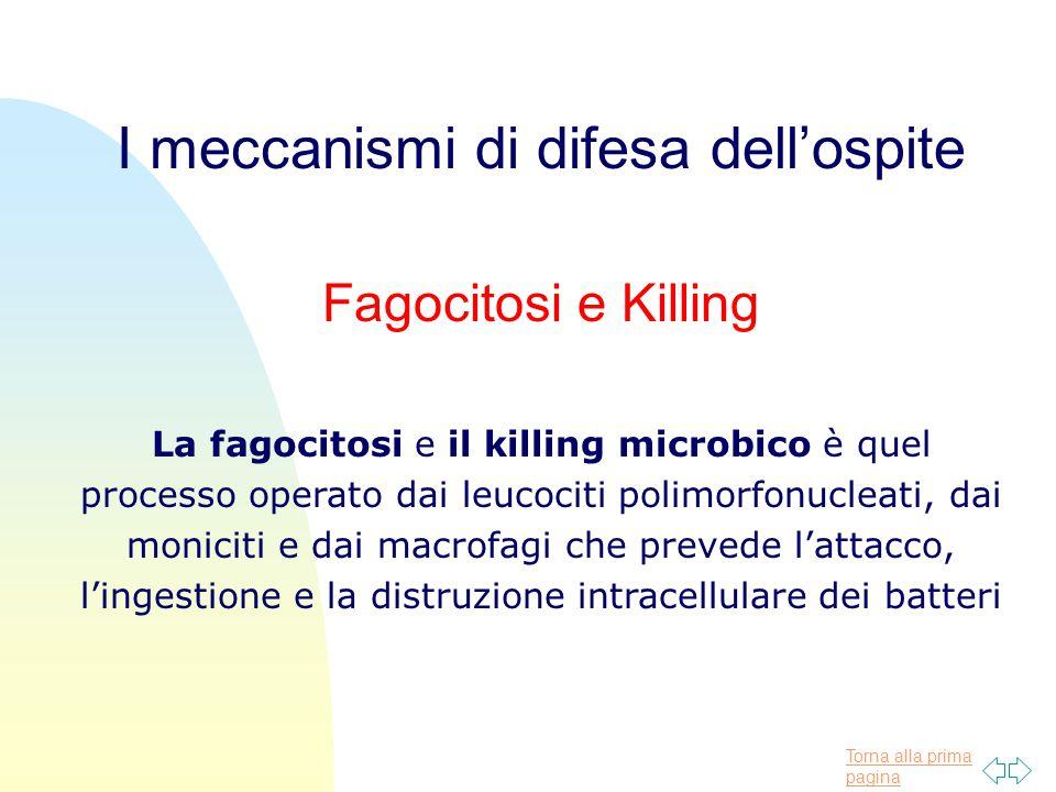 Torna alla prima pagina I meccanismi di difesa dell'ospite Fagocitosi e Killing La fagocitosi e il killing microbico è quel processo operato dai leuco