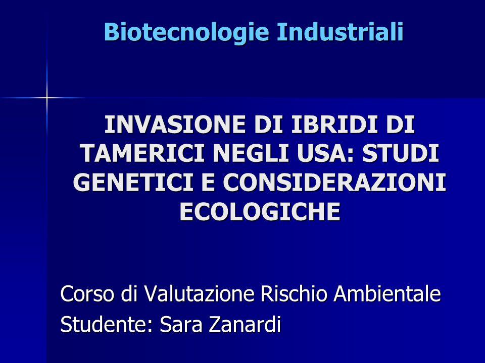 Trovata un scarsissima presenza di ibridi nelle regioni native Euro-asiatiche e al contrario un'estesa ibridazione tra le 2 specie invasive T.