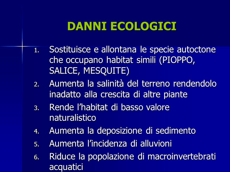 1. Sostituisce e allontana le specie autoctone che occupano habitat simili (PIOPPO, SALICE, MESQUITE) 2. Aumenta la salinità del terreno rendendolo in