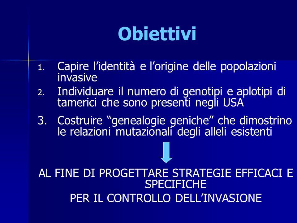 Obiettivi 1. 1. Capire l'identità e l'origine delle popolazioni invasive 2. 2. Individuare il numero di genotipi e aplotipi di tamerici che sono prese
