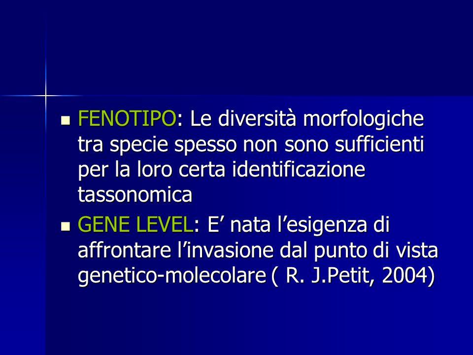 FENOTIPO: Le diversità morfologiche tra specie spesso non sono sufficienti per la loro certa identificazione tassonomica FENOTIPO: Le diversità morfol