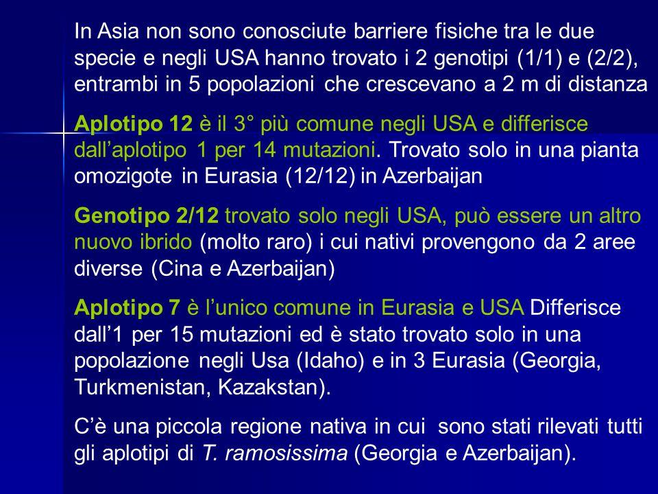 In Asia non sono conosciute barriere fisiche tra le due specie e negli USA hanno trovato i 2 genotipi (1/1) e (2/2), entrambi in 5 popolazioni che cre