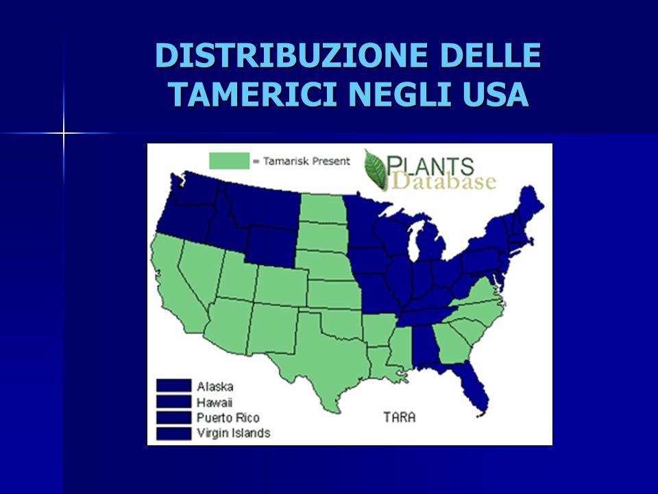 DISTRIBUZIONE DELLE TAMERICI NEGLI USA