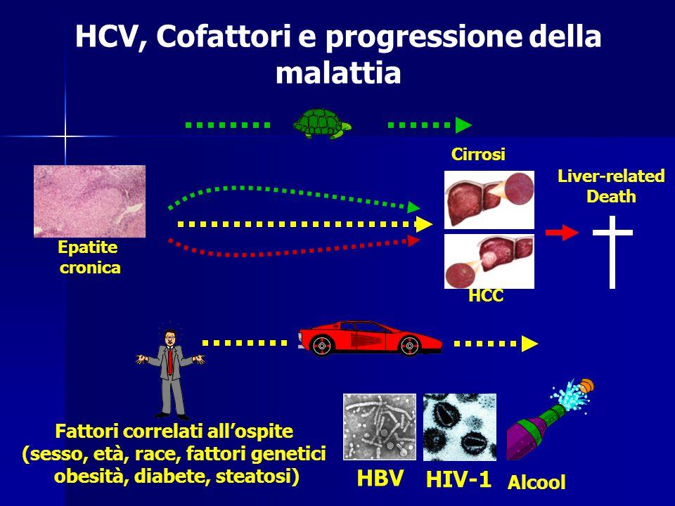 HCV, Cofattori e progressione della malattia Cirrosi HCC Epatite cronica Liver-related Death HIV-1 Fattori correlati all'ospite (sesso, età, race, fat