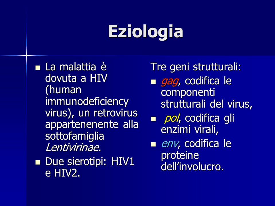 Eziologia La malattia è dovuta a HIV (human immunodeficiency virus), un retrovirus appartenenente alla sottofamiglia Lentivirinae. La malattia è dovut