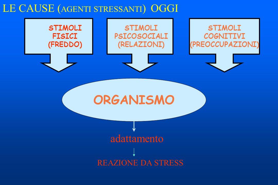 STIMOLI FISICI (FREDDO) STIMOLI PSICOSOCIALI (RELAZIONI) ORGANISMO STIMOLI COGNITIVI (PREOCCUPAZIONI) adattamento REAZIONE DA STRESS OGGILE CAUSE ( AG