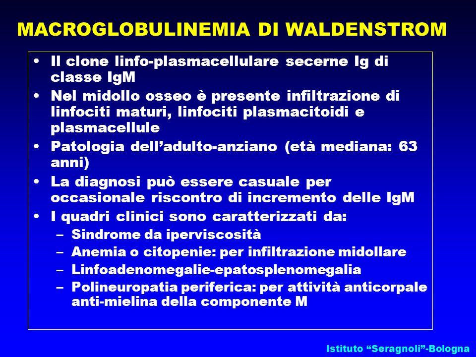 MACROGLOBULINEMIA DI WALDENSTROM Il clone linfo-plasmacellulare secerne Ig di classe IgM Nel midollo osseo è presente infiltrazione di linfociti maturi, linfociti plasmacitoidi e plasmacellule Patologia dell'adulto-anziano (età mediana: 63 anni) La diagnosi può essere casuale per occasionale riscontro di incremento delle IgM I quadri clinici sono caratterizzati da: –Sindrome da iperviscosità –Anemia o citopenie: per infiltrazione midollare –Linfoadenomegalie-epatosplenomegalia –Polineuropatia periferica: per attività anticorpale anti-mielina della componente M