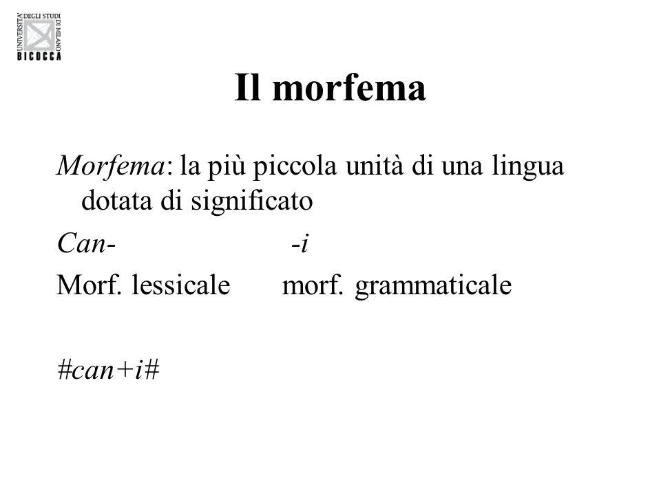 Il morfema Morfema: la più piccola unità di una lingua dotata di significato Can- -i Morf.