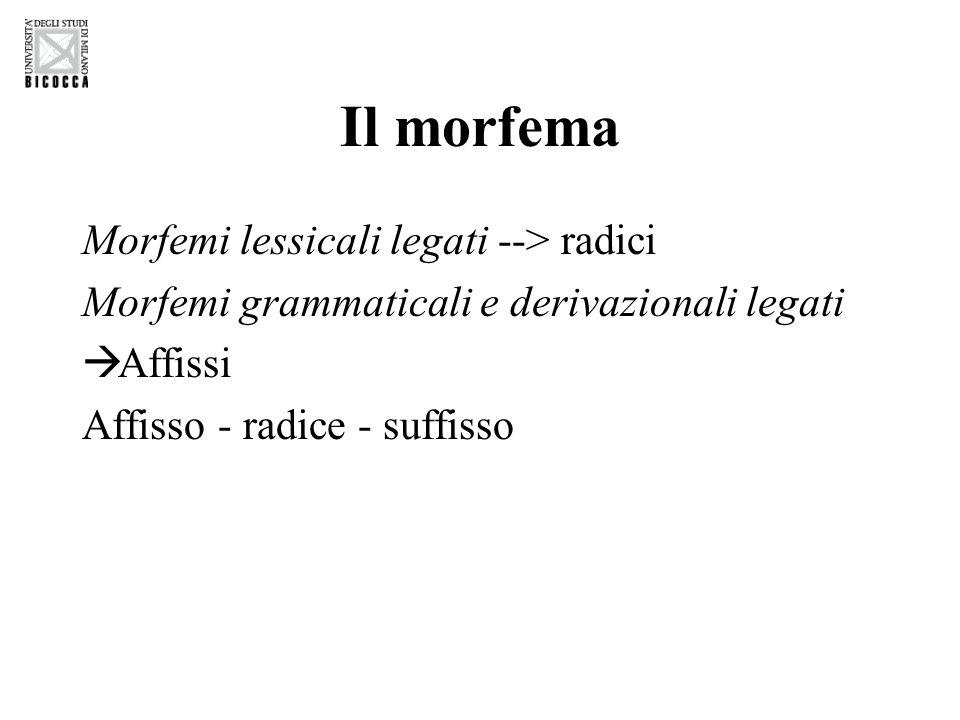 Il morfema Morfemi lessicali legati --> radici Morfemi grammaticali e derivazionali legati  Affissi Affisso - radice - suffisso