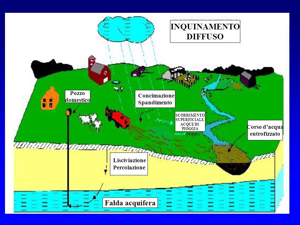 1 Falda acquifera Lisciviazione Percolazione Concimazione Spandimento Pozzo domestico Corso d'acqua eutrofizzato INQUINAMENTO DIFFUSO SCORRIMENTO SUPE