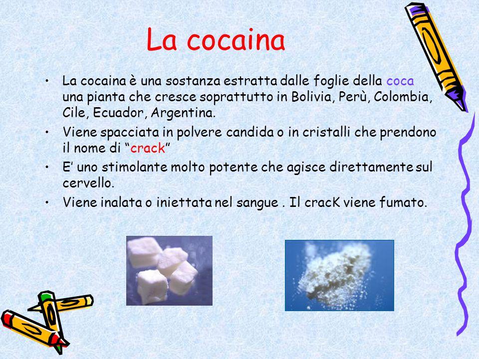 La cocaina La cocaina è una sostanza estratta dalle foglie della coca una pianta che cresce soprattutto in Bolivia, Perù, Colombia, Cile, Ecuador, Arg